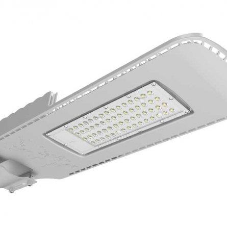 Đèn đường LED chiếu sáng NLMT CSD01SL 50W 6500K Rạng Đông