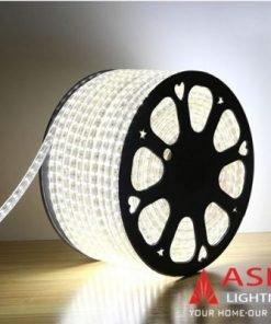 Led dây 2835 Asia