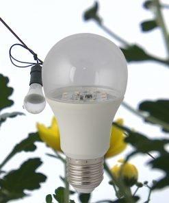 Đèn LED hoa cúc A60/6W-WR Rạng Đông
